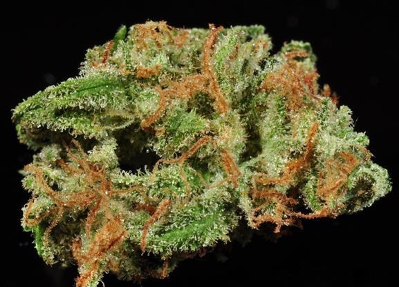 Super Lemon Haze strain