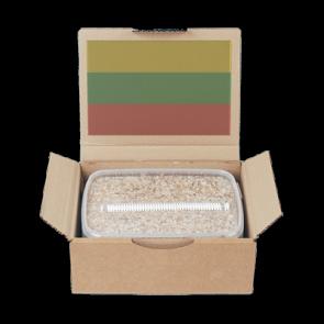 Magic Mushroom Grow Kit PES Amazon by Mondo®