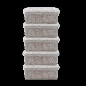 Magic Mushroom Grow Kits 5 package deal by FreshMushrooms®