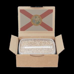 Mondo® Treasure Coast Magic Mushroom Grow Kit